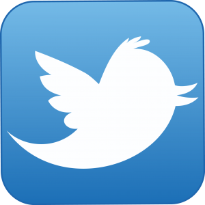 twitter-icon 8