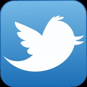 twitter-icon 8